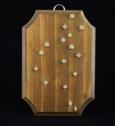 "These serpent vertebrae are beetled, macerated and slightly degreased while displayed on the panel. Approximately 5"" x 3.5"" x 1/4"" thick pine panel. Hand stained in Colonial Pine and varnished in semi gloss."