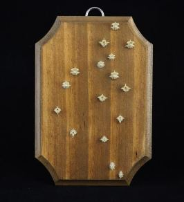 """These serpent vertebrae are beetled, macerated and slightly degreased while displayed on the panel. Approximately 5"""" x 3.5"""" x 1/4"""" thick pine panel. Hand stained in Colonial Pine and varnished in semi gloss."""